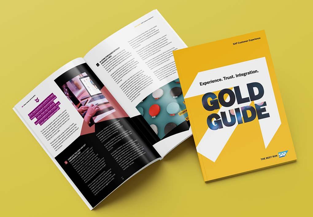 rapitag-sap-gold-guide